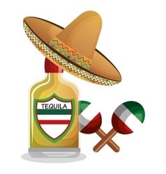 Bottle tequila maraca and hat mexican design vector