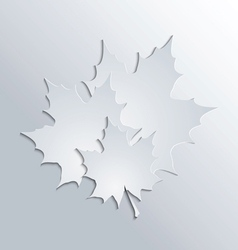 maple leaves silhouettes on gray background vector image vector image