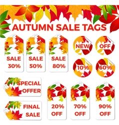 autumn sale tags vector image