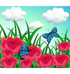 Butterflies in the meadow vector image