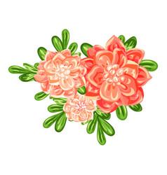 camellia bunch icon cartoon style vector image