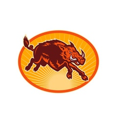 Charging attacking razorback wild boar or pig vector image