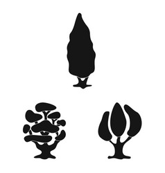 Design of tree and nature symbol set of vector