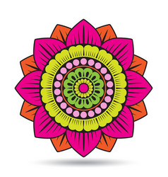 Lotus flower elements oriental ornament graphic vector