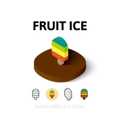 Fruit ice icon in different style vector image vector image