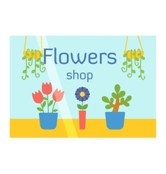 Flowers shop facade vector