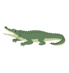 friendly cute green alligator funny wild animal vector image