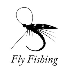 graphic fly fishing vector image