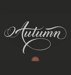 Hand drawn lettering - autumn elegant modern vector