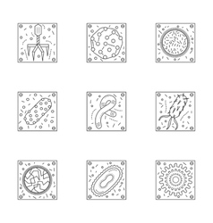 Microorganisms line icons collection vector image