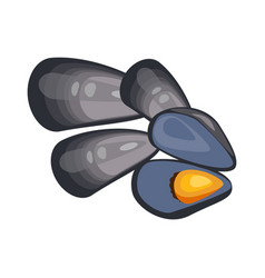 Mussels in shell seafood vector