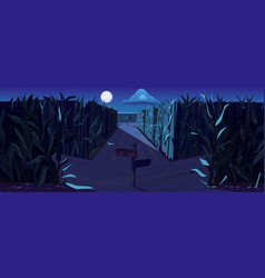 road on cornfield with fork at night vector image