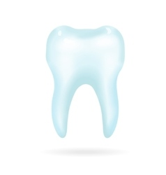 Tooth on a white background vector image