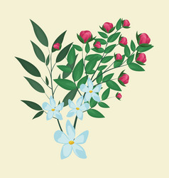 jasmine flower leaves ornament floral vector image