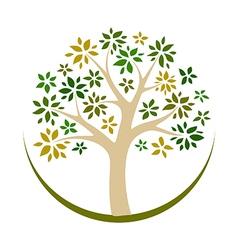 tree logo vector image