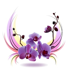 greeting card with orchids bouquet vector image vector image