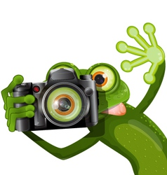 frog with a camera vector image