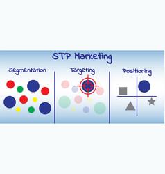 stp marketing diagram - process vector image