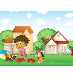 A boy feeding his puppies vector image