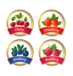 Berry jam and marmalade labels fresh summer vector