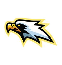eagle hawk falcon mascot logo mascot design vector image