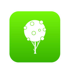 tree with fruits icon digital green vector image