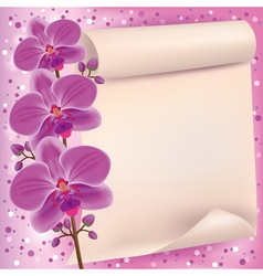 Invitation or greeting card with purple orchid vector image vector image
