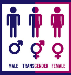 Transgender male set of symbols isolated on vector