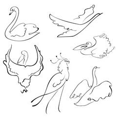 birds sketches vector image