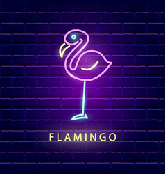 Flamingo neon bright sign vector