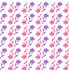 pink flower pattern on white background vector image