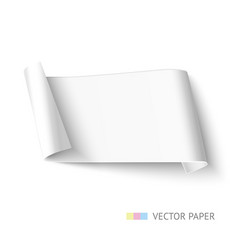 White paper roll long design for web banner vector
