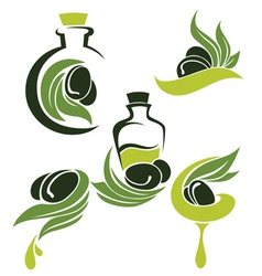 green olive leaves bottles and oil vector image vector image