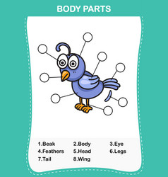 nightingale vocabulary part of body vector image vector image