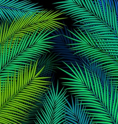 Tropical background with palm leaves vector image vector image