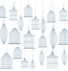 birdcage background design vector image