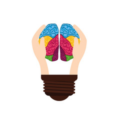 bulb idea and human brain vector image