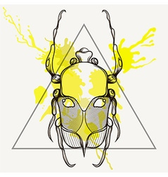 Entangle stylized scarab beetle in triangle frame vector