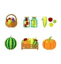 Fharvest autumn food in wicker basket vector image