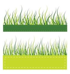 Green grass card vector image
