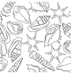 seamless background with different shells vector image