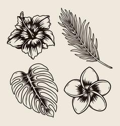Tropical floral vintage monochrome collection vector