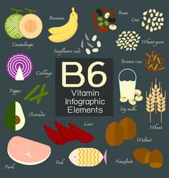 Vitamin b6 infographic element vector