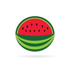 Watermelon color fruit vector