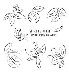 Contour ink flowers vector image