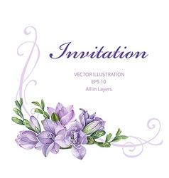 Purple freesia flowers vector