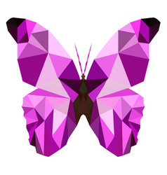 Butterfly poly vector