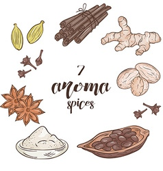 set of 6 isolated cartoon hand drawn aroma spices vector image