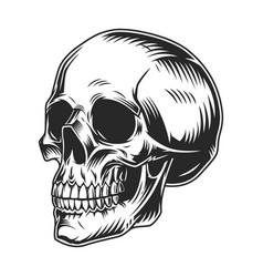 Vintage human skull monochrome concept vector
