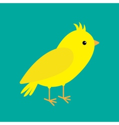 Canary bird Yellow feather Green background Flat vector image vector image